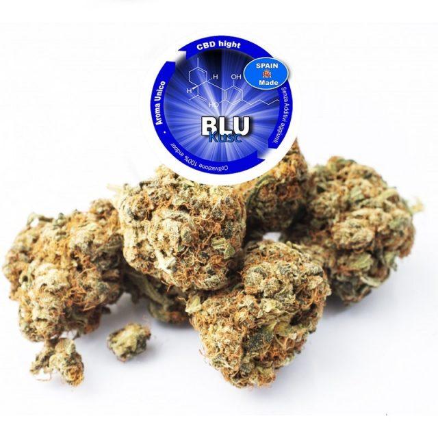 Marijuana legale blue kush