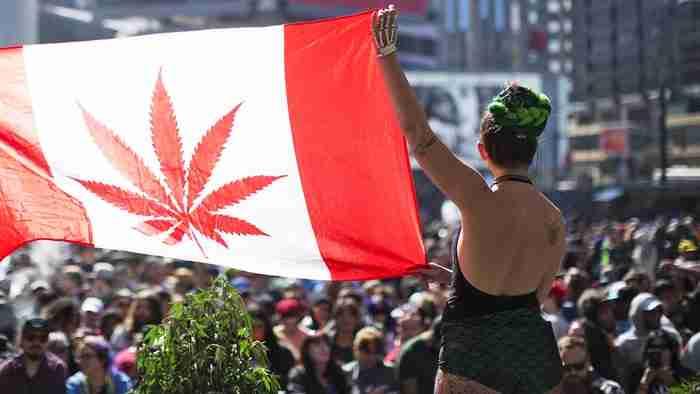 canapa legale in canada