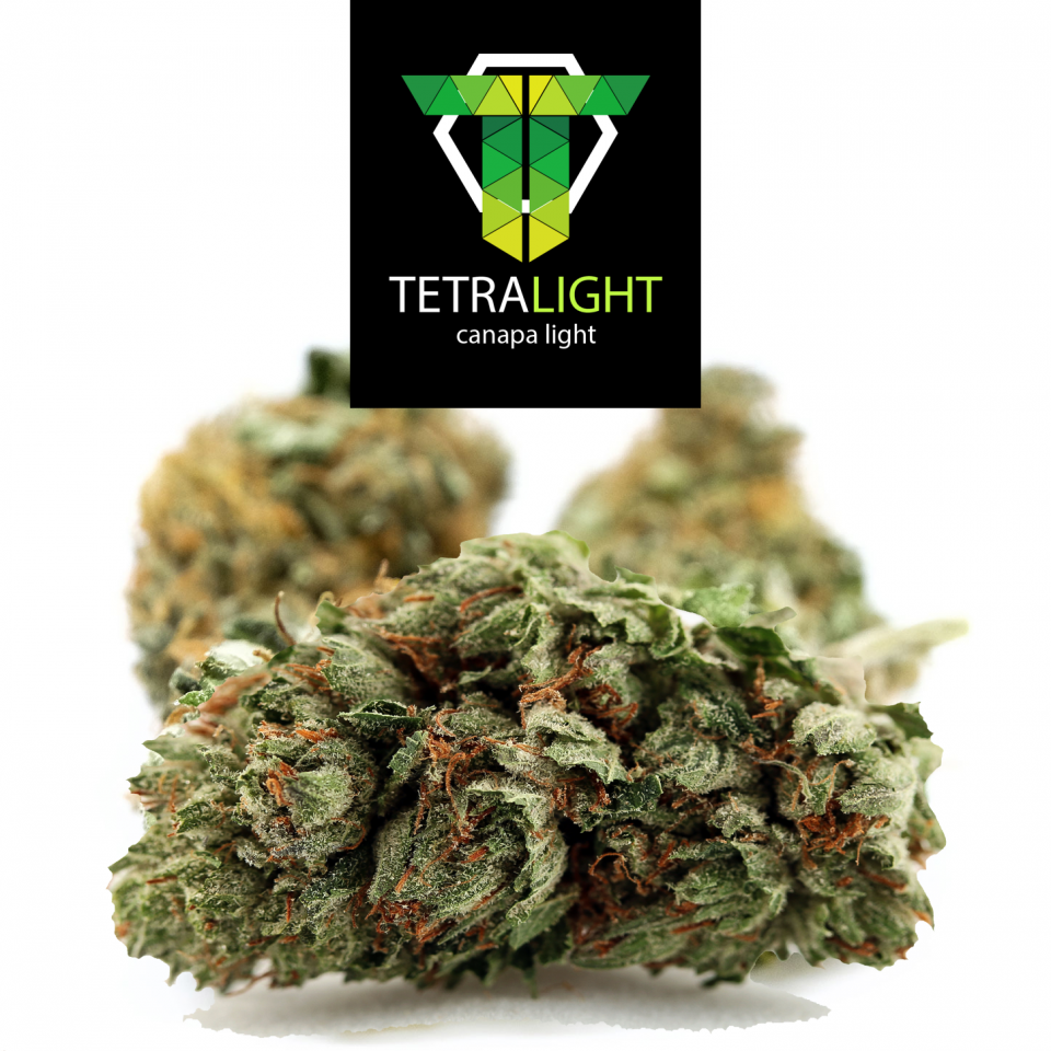 white star cannabis light