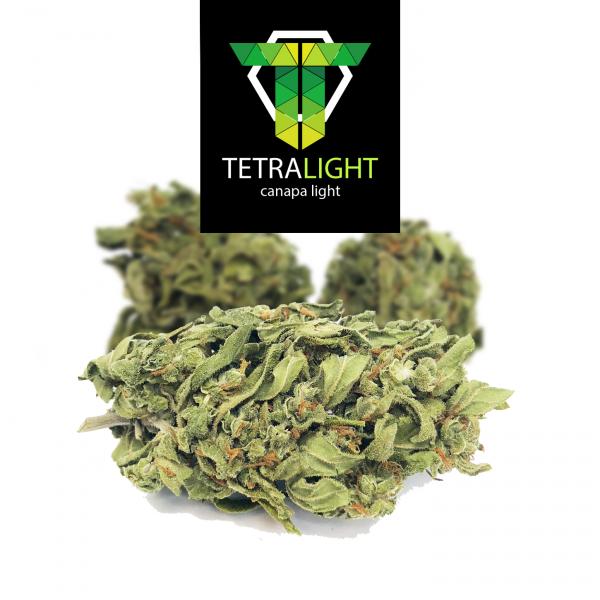 cannabis light karma lime
