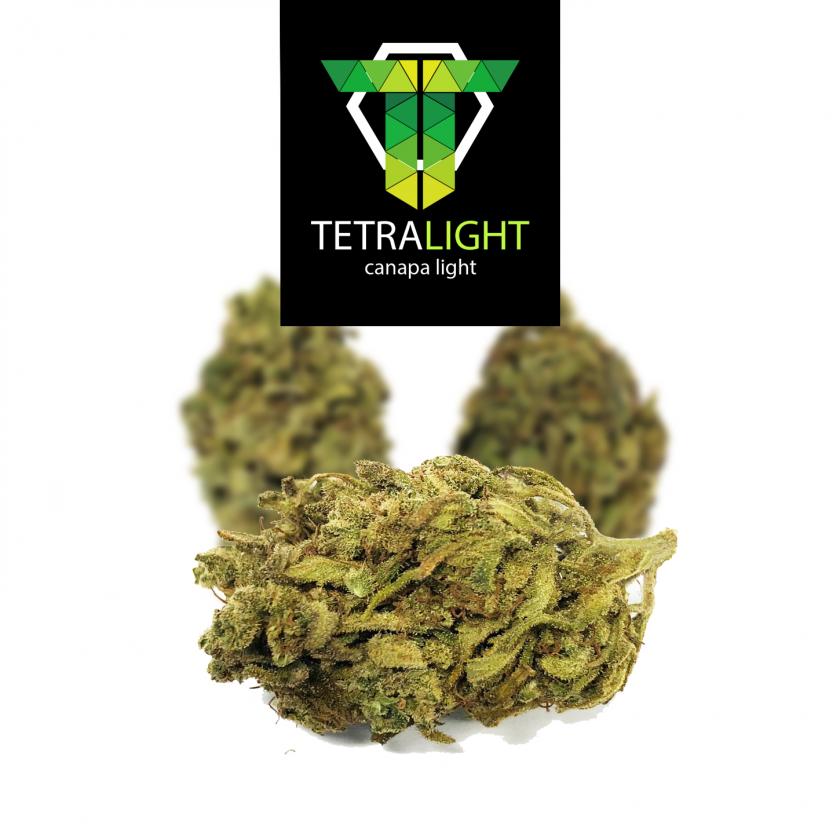 cannabis light amnesia