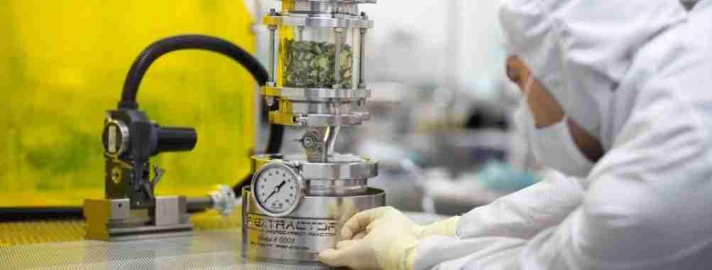 macchinario a pressione per estrazione olio di cbd