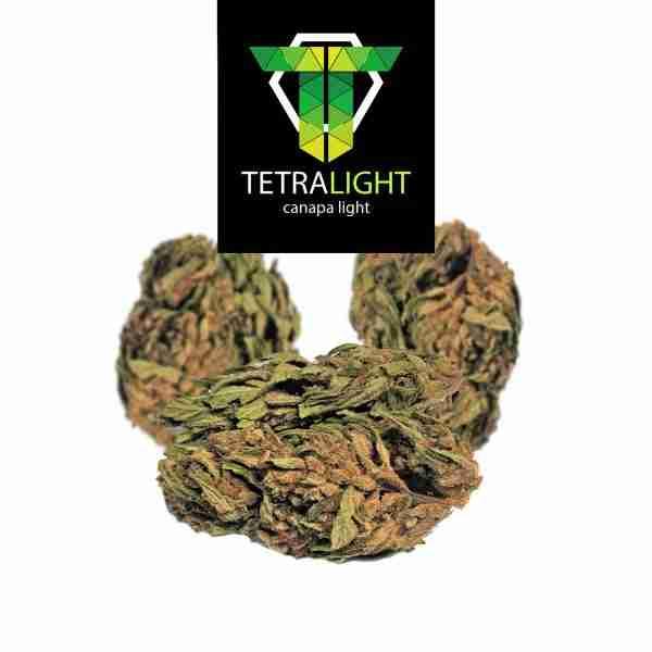 cannabis light karlotta