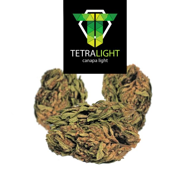 cannabis light karlotta